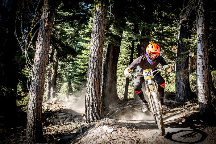 Evan Turpen splits the trees on stage 1. Photo: Called to Creation.